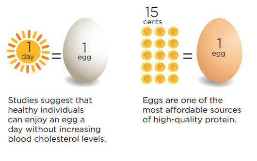 Eggs are one of the most affordable sources of high-quality protein