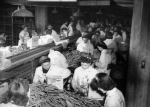 "Female employees processing ""Yellow Band"" weiners at the Oscar Mayer Company during World War II."