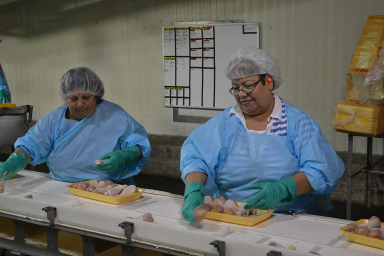 Poultry Workers Line Speed 2