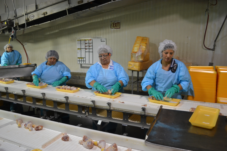 Poultry Workers Line Speed