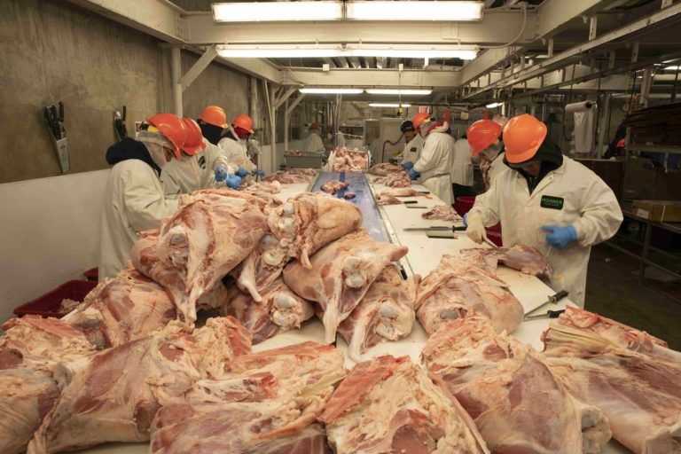 Local 342 Meat Packers